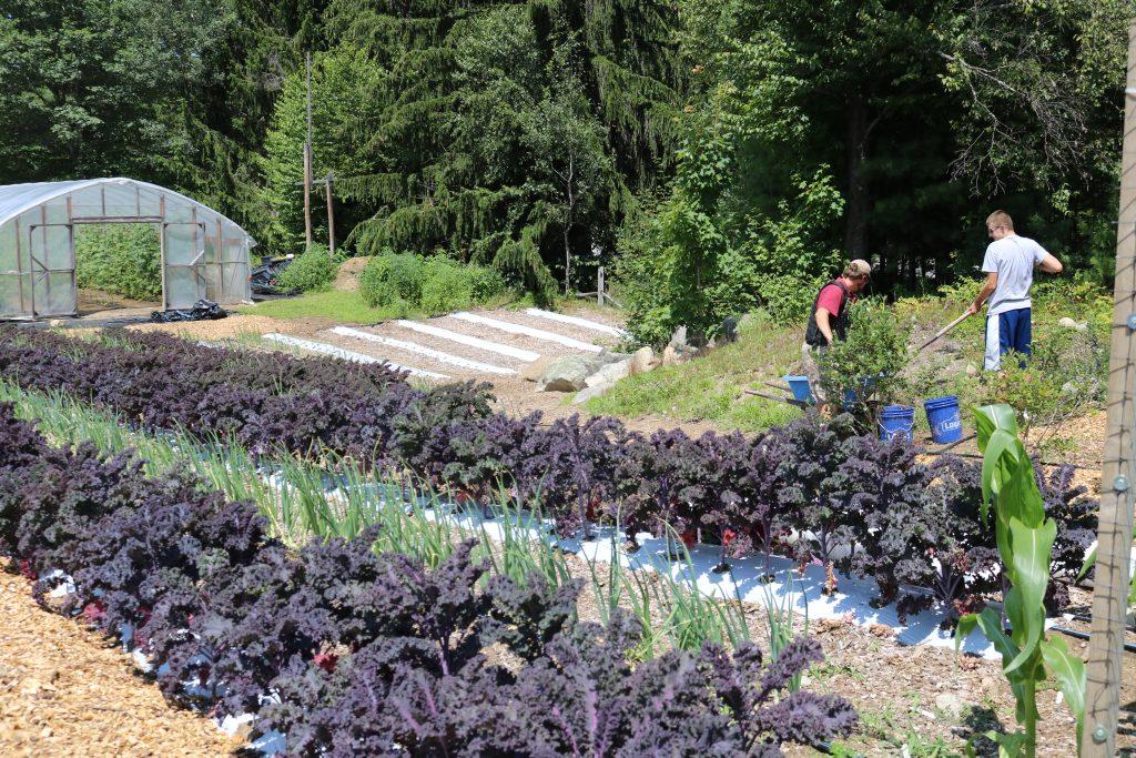 Organic Gardening Program