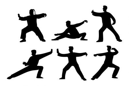FREE Introduction to Tai Chi and Qi Gong Classes